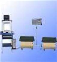 大型振動試驗機/汽車顛簸檢測機