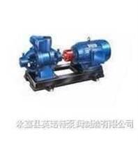 双级漩涡泵