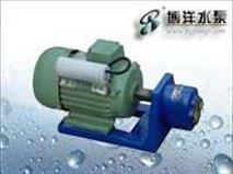 WCB、S型微型齿轮油泵