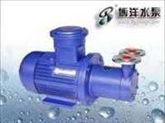 CW型磁力驱动旋涡泵