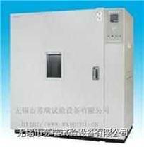 電熱幹燥試驗箱