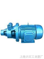 20w-65上海W型旋涡泵