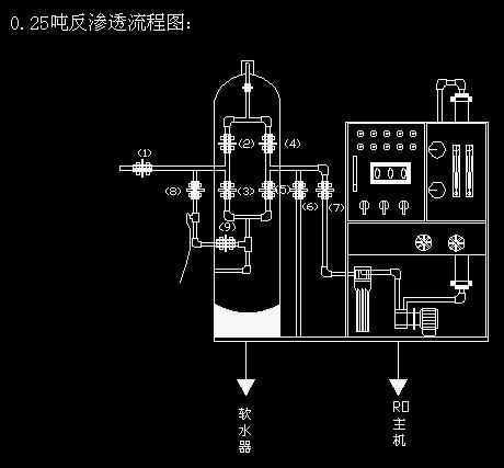 0.25吨反渗透水处理