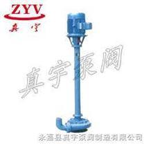 污水泥浆泵