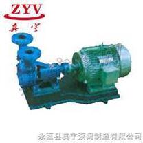 单级悬臂式旋涡泵