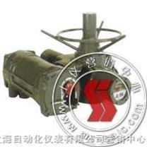 M系列-罗托克电动执行机构-上海自动化仪表十一厂