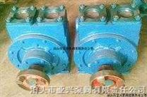 100YPB-100滑片泵 汽油滑片泵 清油滑片泵