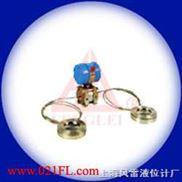 雙法蘭液位變送器-上海風雷自動化儀表betway手機官網