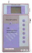 手持式烟气分析仪(便携式)