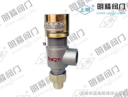 ah21f型-弹簧封闭式安全回流阀图片