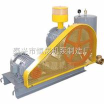 供应江苏恒晟HC-125C大型回转式鼓风机