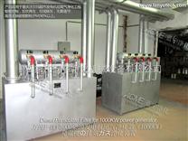 供应大型超市应急发电机组尾气净化器