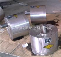 不锈钢齿轮泵,高压齿轮泵