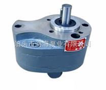 2.5-800液压齿轮泵