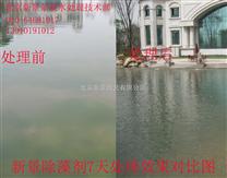 新景除藻剂人工湖水处理