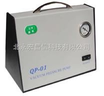 QP-01 真空泵