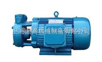 W型单级直连式漩涡泵