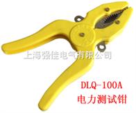 DLQ-100A电力测试钳
