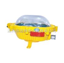 BFC8920、海洋王灯具、BFC8920、BFC8920、BFC8920粉尘防爆内场强光泛光灯