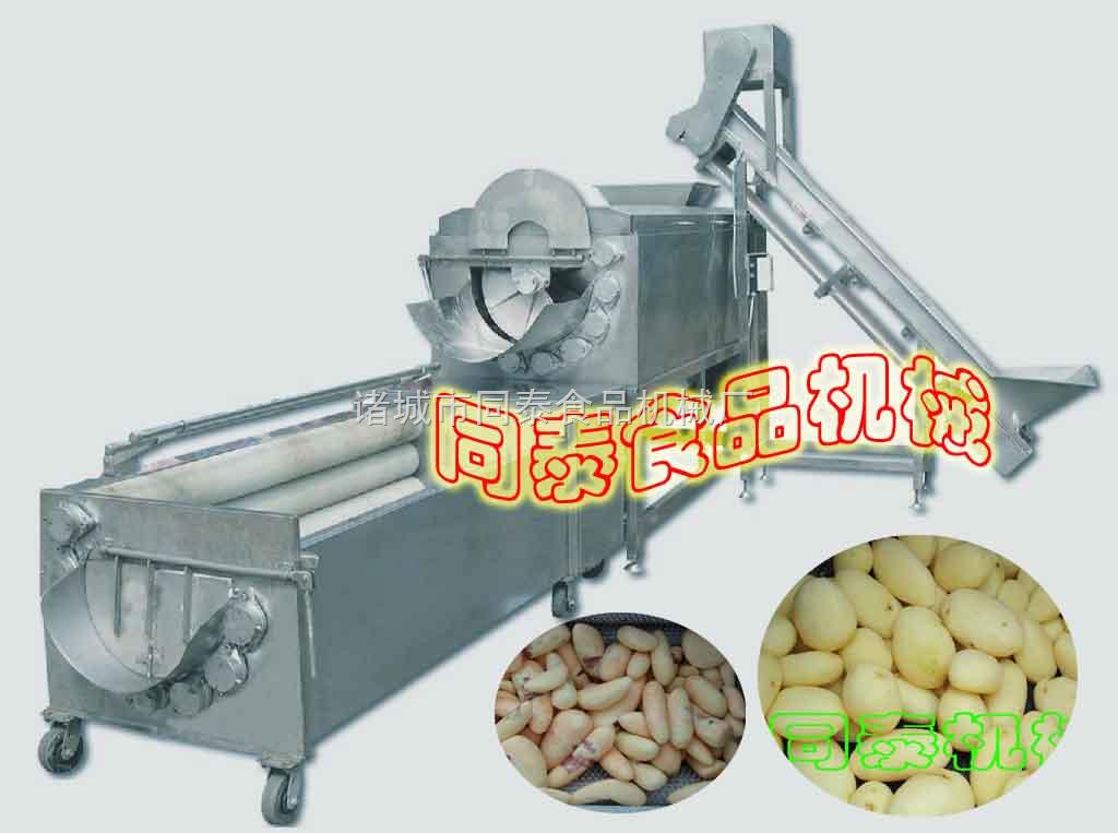 萝卜清洗机,油脂清洗机,毛刷清洗机,土豆清洗机在食品工业中的应用专用生姜图片
