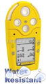 BW M5气体检测仪