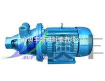 1W单级直联旋涡泵