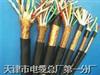 ZR-RVVP电缆;屏蔽电缆