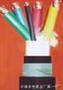 RVVZ通信设备电源线;机房阻燃软电缆