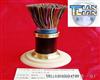 低烟无毒阻燃通信电缆WDZ-HYA WDZ-HYA23 WDZ-HYA53 价格