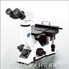 GX41倒置金相顯微鏡