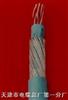 MHYVRP 煤矿用阻燃通信电缆 MHYVRP软芯屏蔽电缆