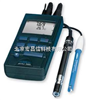 pH/Oxi 3400i手持式PH/溶解氧测试仪